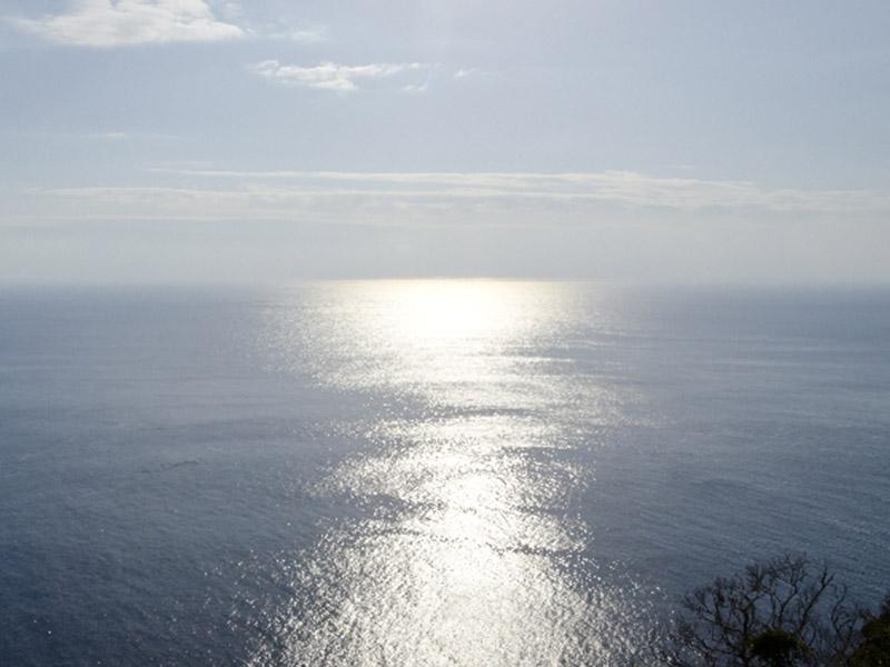 太平洋の潮風